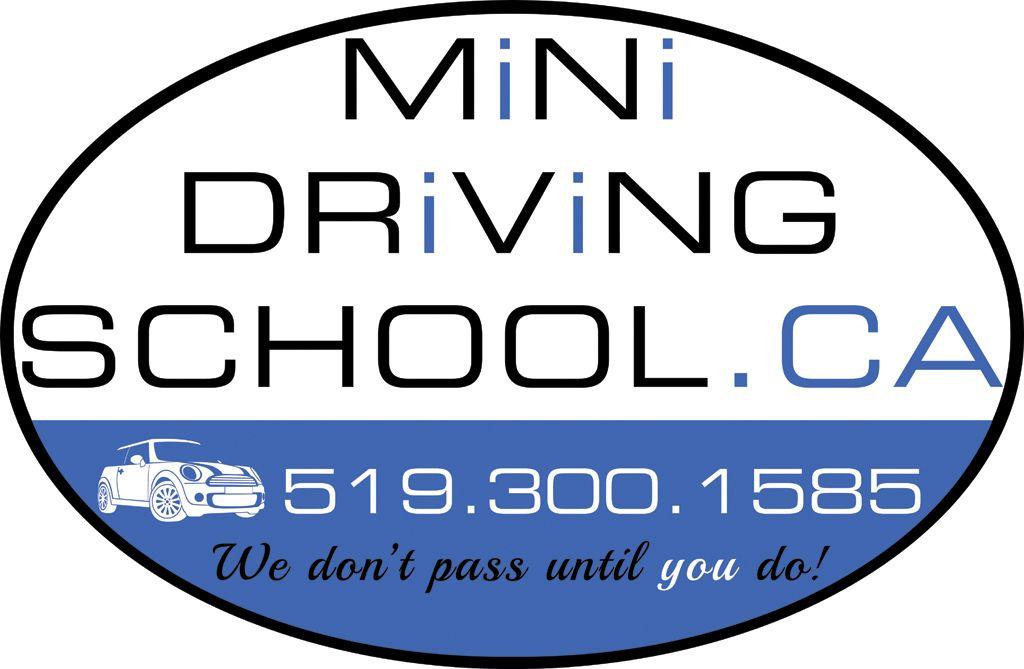 Mini Driving School